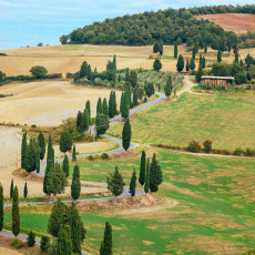 Best of Tuscany (for foodies) | prettysimplesweet.com